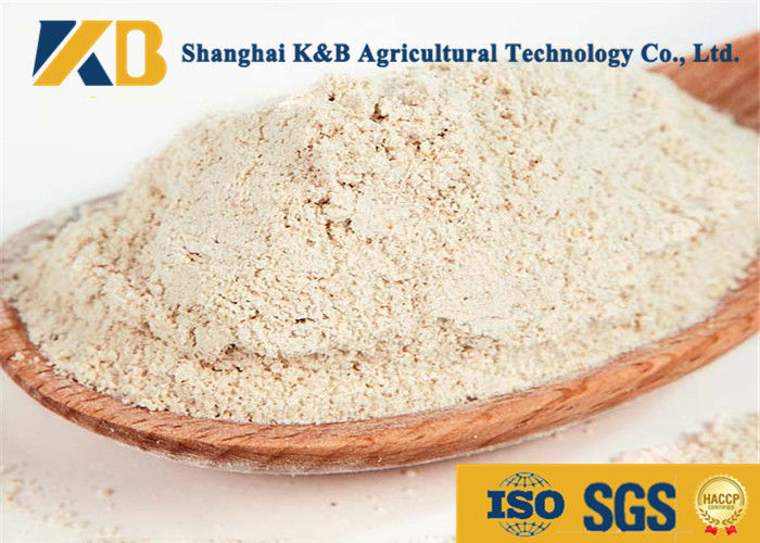 Saving Protein Brown Rice Powder Reduce Cost Increase Fodder'S Availability