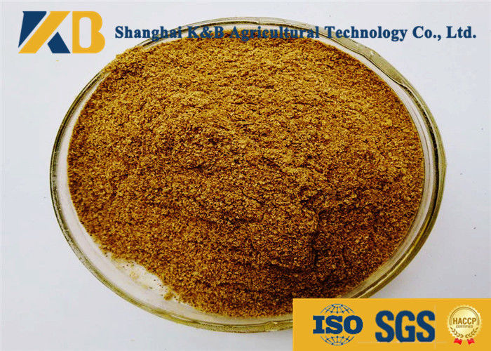 Natural Feed Grade Fish Meal Powder Light Smell With 60% Protein Content