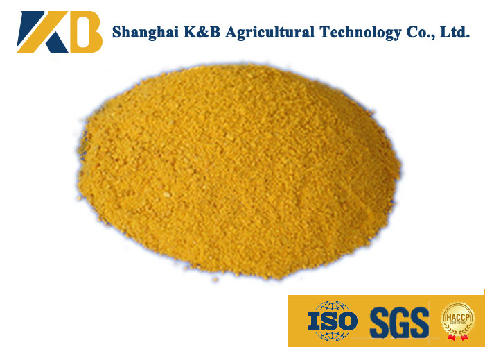 60% Content Corn Protein Powder / Animal Feed Additives For Shrimp Breed